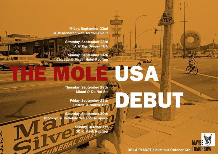 The mole v1