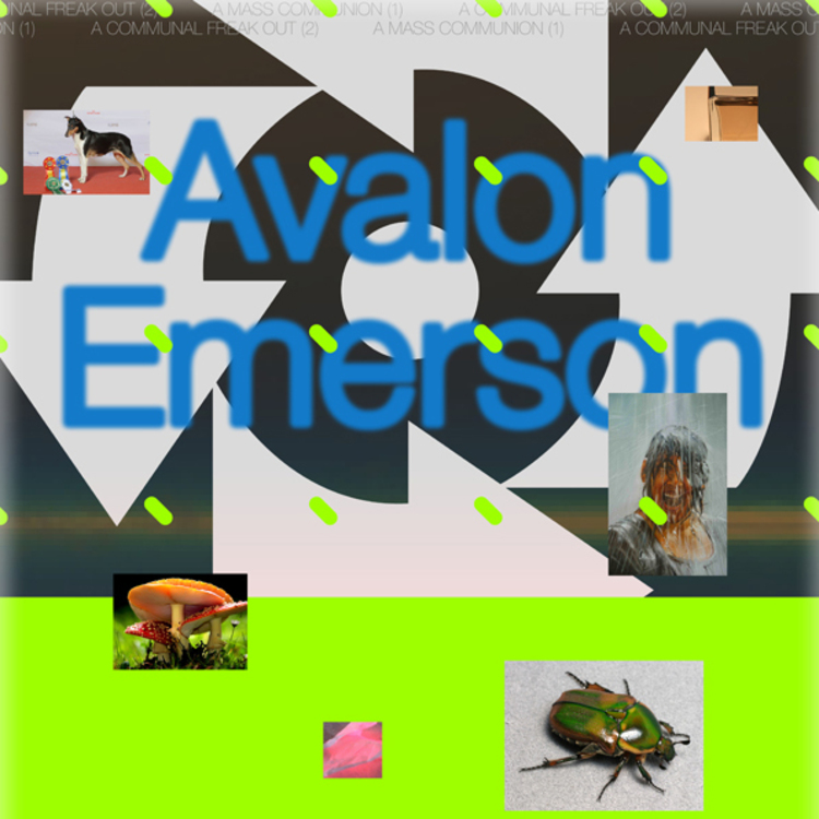 Av web poster