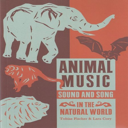 Animal music cover square