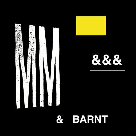 Cover michaelmayer barnt