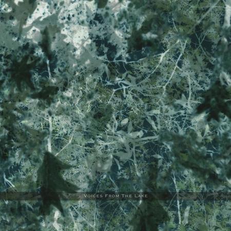 Vftl album cover a high resolution