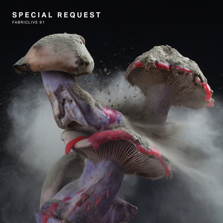Fabriclive91 packshot xl