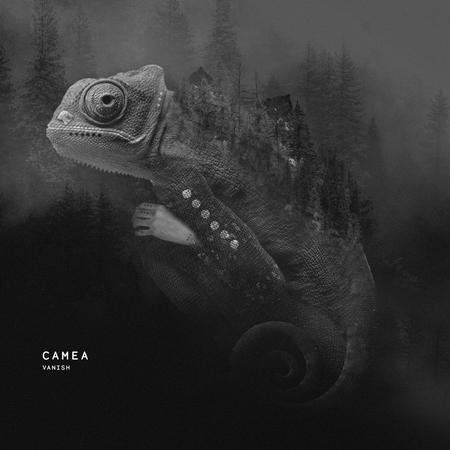 Artwork camea vanishep