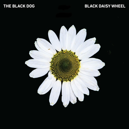 The black dog black daisy wheel artwork
