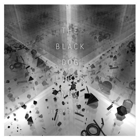 4945 black dog