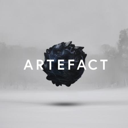 20980 artefact
