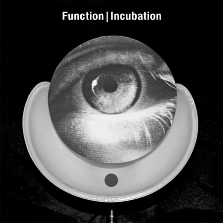 10409 incubation