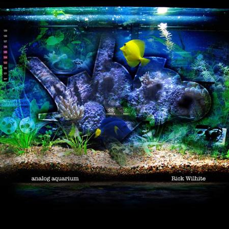 3023 analog aquarium